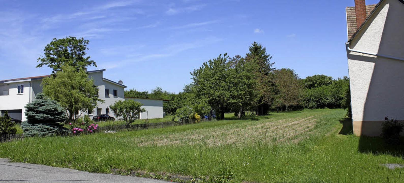 Zwischen diesen beiden Gebäuden in der...bruar ein Bürgerentscheid entscheiden.  | Foto: Adelbert Mutz