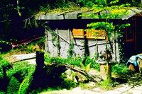 Großer Streit um eine kleine Hütte im Haseler Wald