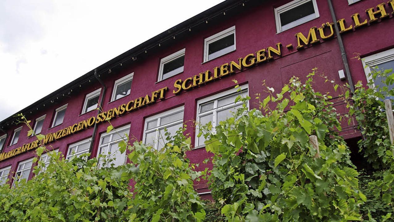 Seit Herbst ist die WG Schliengen-Müll...ther wurde außergerichtlich beigelegt.  | Foto: Martin Pfefferle