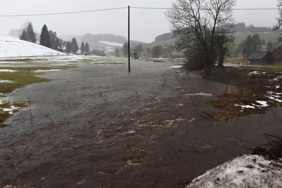 Der Josbach bei Breitnau ist nach starken Regenfällen über die Ufer getreten. (Foto: dpa)