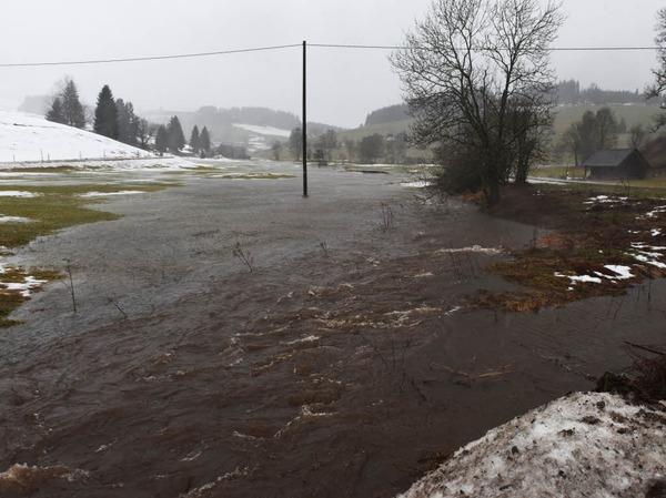 Der Josbach bei Breitnau ist nach starken Regenfällen über die Ufer getreten.