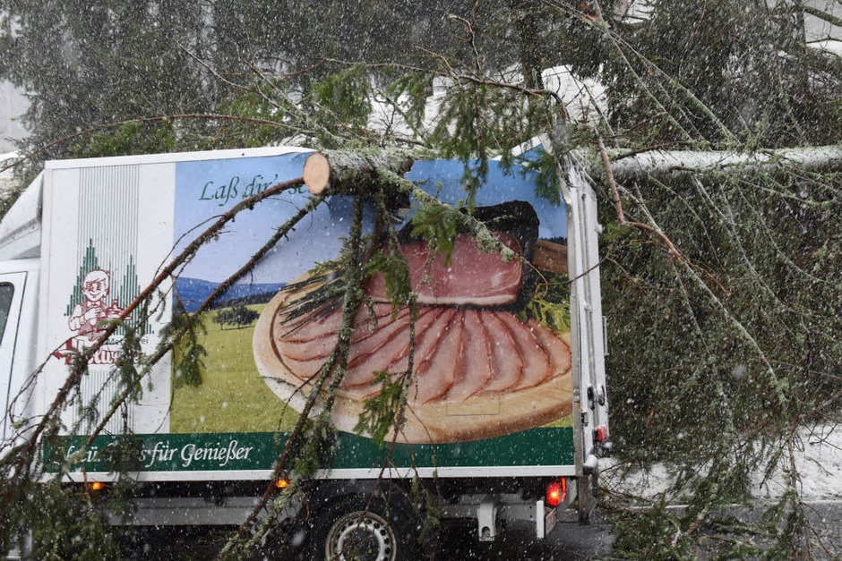 Auf der B500 am Feldberg landete ein Baum auf einem Metzgerei-Lkw. (Foto: dpa)