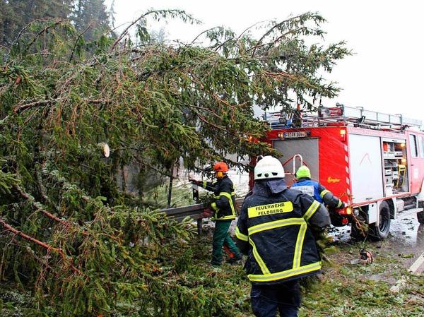 Im gesamten Hochschwarzwald hat Sturmtief Burglind Schäden angerichtet