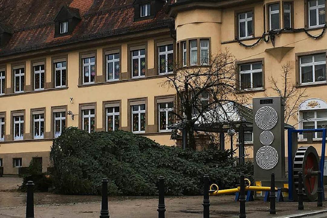 In Wehr fiel die Weihnachtstanne auf d...schulplatz um. Verletzt wurde niemand.  | Foto: Simon David