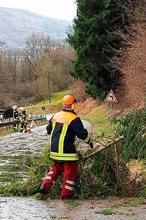 Auch die Freiwillige Feuerwehr in Wehr...it Bäumen auf der Fahrbahn zu kämpfen.  | Foto: Freiwillige Feuerwehr Wehr
