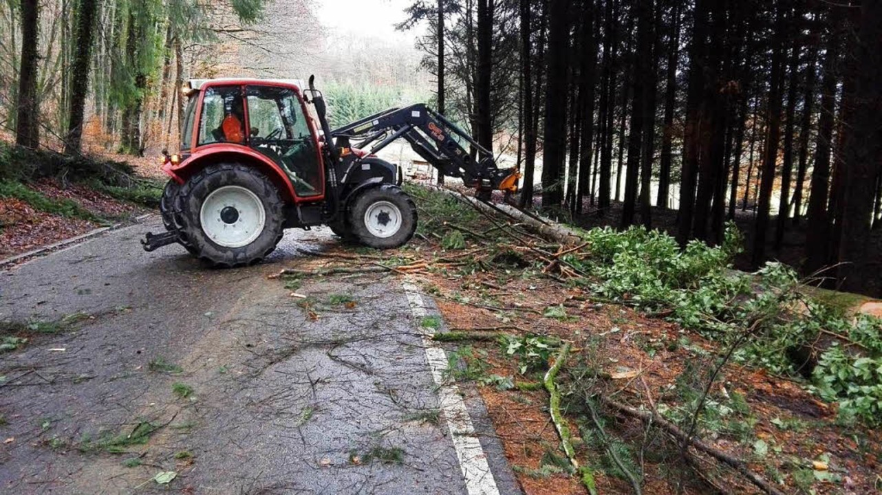 An der Scheideck und in Endenburg hatt...uerwehr mit umgekippten Bäumen zu tun.  | Foto: Bachmann
