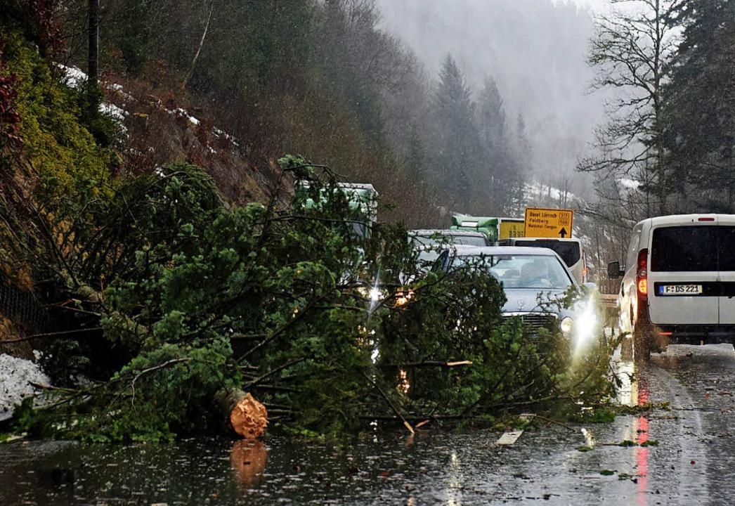 Umgestürzte Bäume sorgten auf der Stre...g zeitweise für massive Behinderungen.  | Foto: dpa
