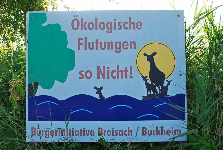 Die Bürgerinitiative (BI) für eine ver...d bei Burkheim wieder geflutet werden.  | Foto: Benjamin Bohn