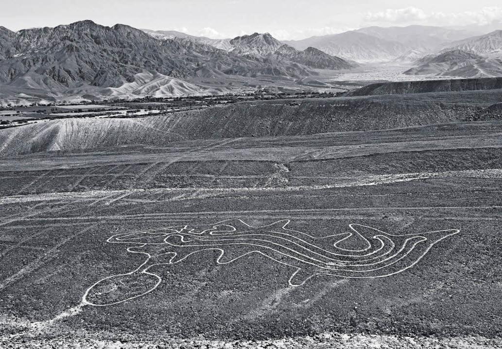 Kontaktaufnahme mit dem Übernatürlichen: Geoglyphe eines Wals  | Foto: Casabonne/museo de arte de lima