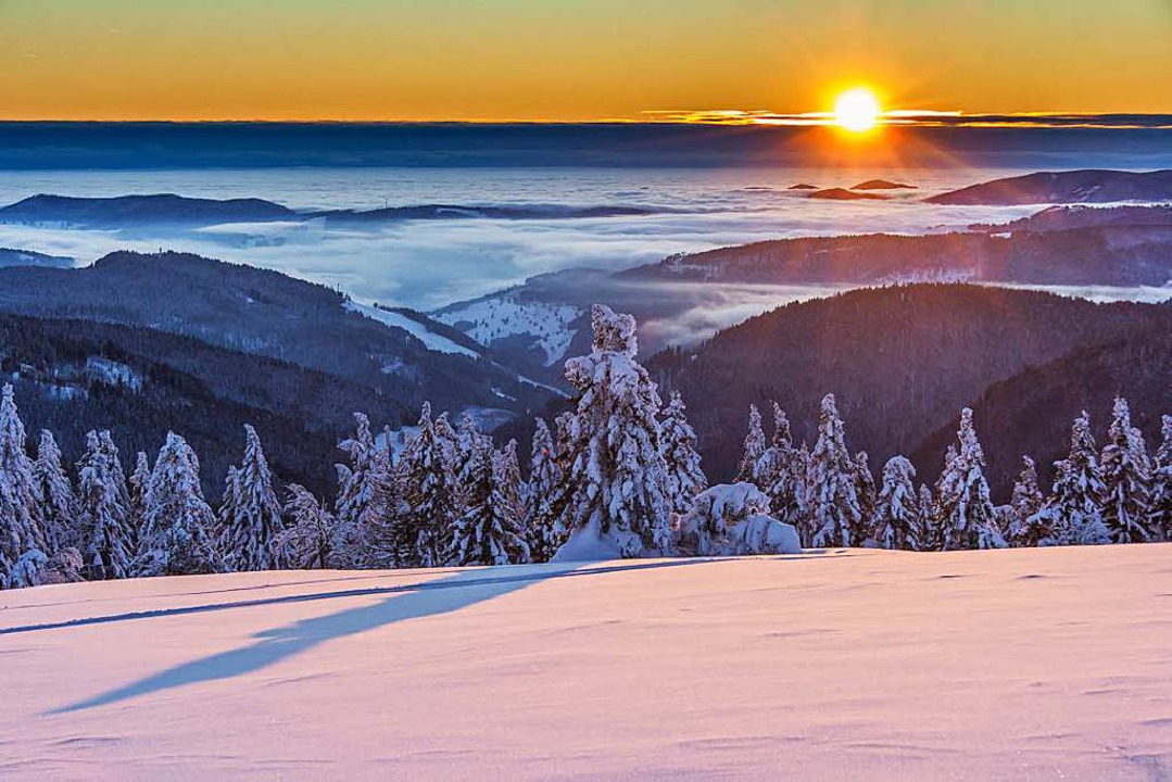 Scharzwald-Eyecandy – solche mal...cial Web gerne mal Hunderte von Likes.  | Foto: honorarfrei