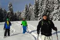 Sparen Sie mit BZCard bei Schneeschuh-Touren auf dem Belchen!
