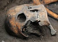 2400 Jahre alte Gebeine unter Millionenstadt