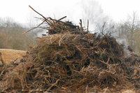 Illegaler Schutt: Fischinger Feuerwehr wacht über Holzanlieferung