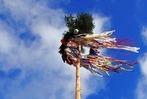 Fotos: So war das Narrenbaumstellen 2018 in Rheinfelden