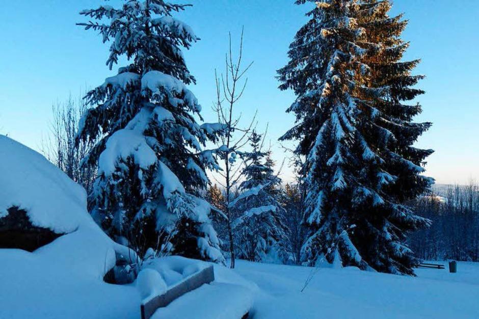 Klirrende Kälte, blauer Himmel und Sonnenschein: So zeigt sich der Hochschwarzwald zum Ende der närrischen Tage. (Foto: Peter Stellmach)