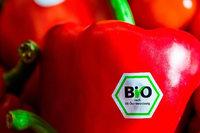 Die Bio-Branche spürt Rückenwind