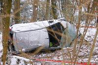 Auto stürzt zehn Meter weit eine Böschung hinab, Feuerwehr birgt verletzten Fahrer