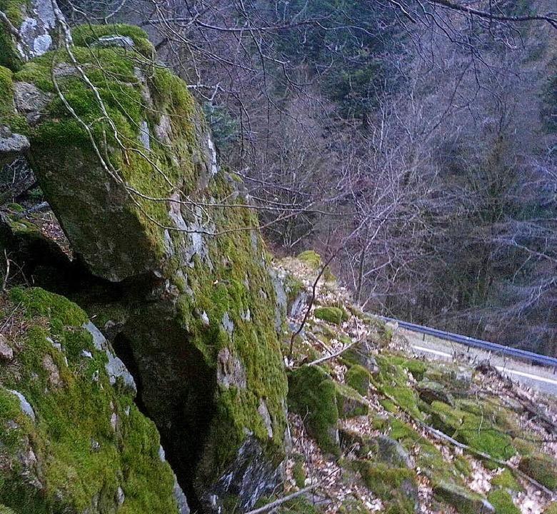 Imposant sind die Felsen über der L131...aber auch potenziell sehr gefährlich.   | Foto: Alpina Fels- und Gemäuersanierung GmbH