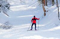 Loipen im Hochschwarzwald hoffen auf Schnee und fürchten Regen