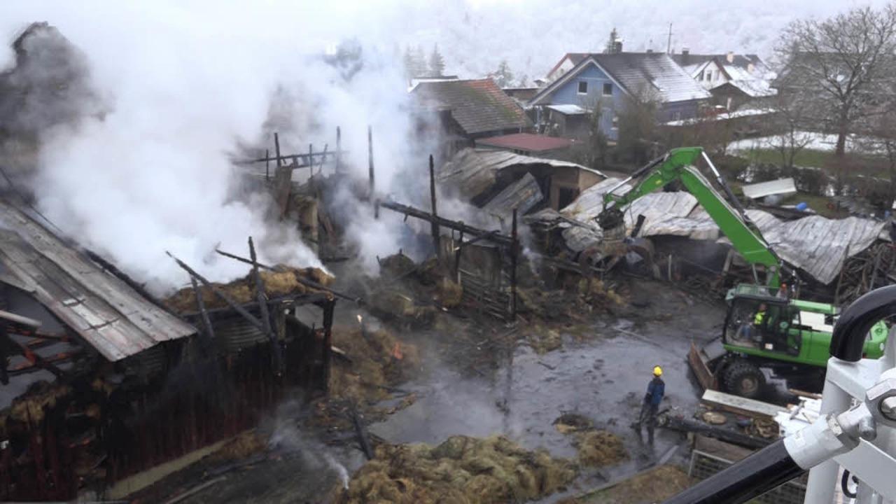 Bei einem Brand in einem Hüsinger Stall sind am Sonntag 27 Rinder verendet.  | Foto: Martin Klabund