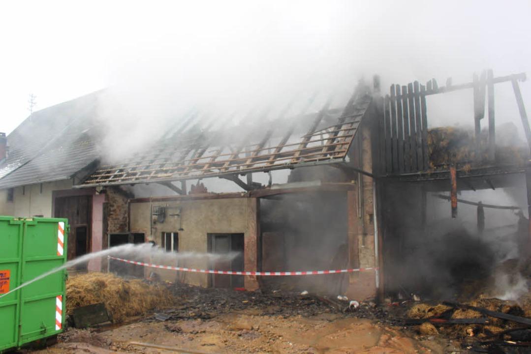 Bei einem Feuer in einem Hüsinger Stal... Sonntag 27 Rinder ums Leben gekommen.  | Foto: Martin Klabund