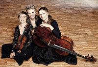 Trio Vivente am 24. Februar in Denzlingen
