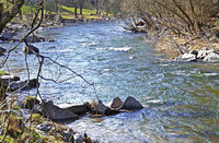 Angler zufrieden mit Wasserqualität