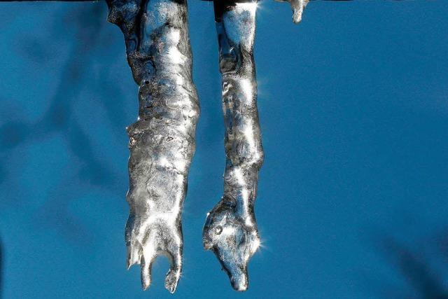 Arktische Kälte zieht übers Land - Südbaden wird zum Gefrierfach