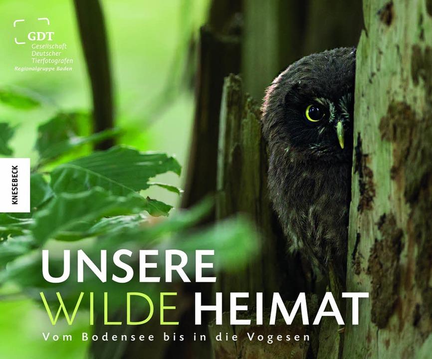 | Foto: Knesebeck Verlag