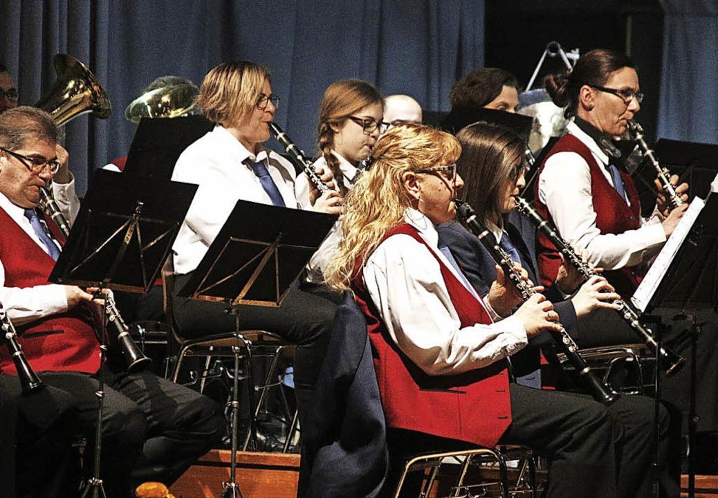Blasmusik vom Feinsten gab es in Sulz.  | Foto: HEIDI FÖSSEL