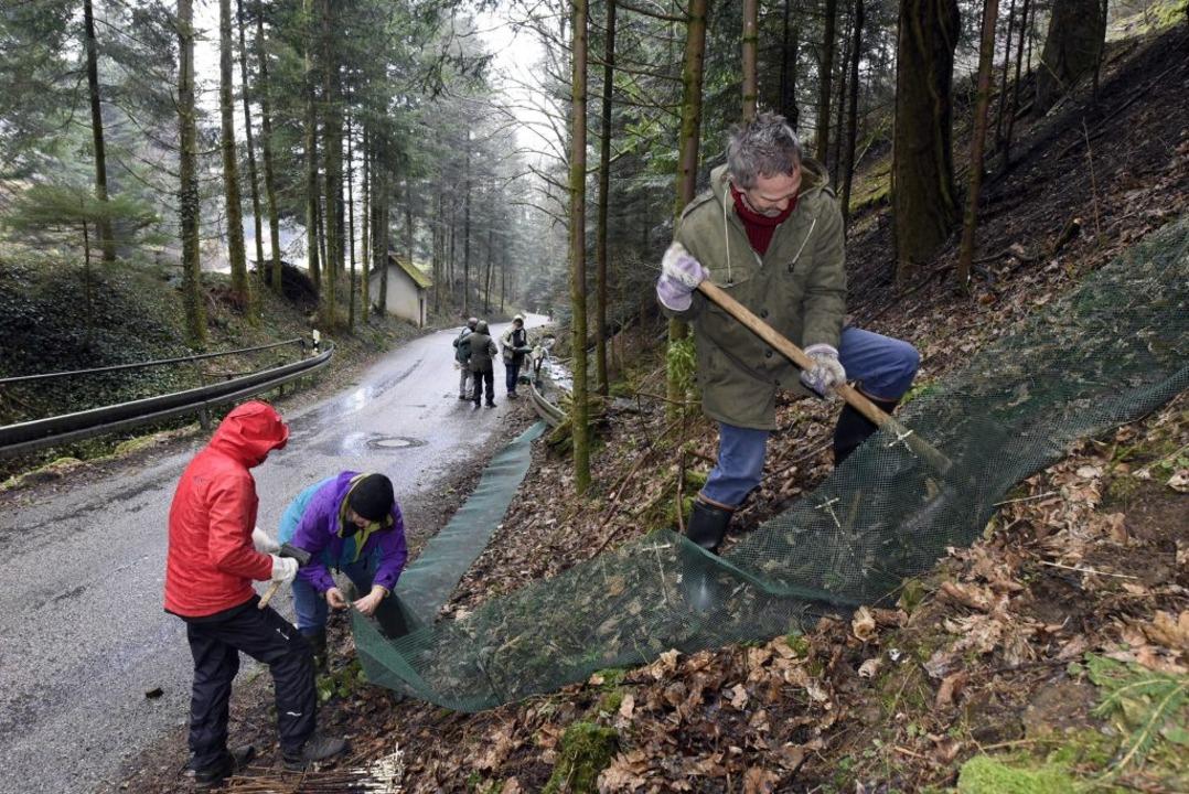 Gestern wurde im Kappler Kleintal wieder der Amphibien-Schutzzaun aufgebaut.   | Foto: Thomas Kunz