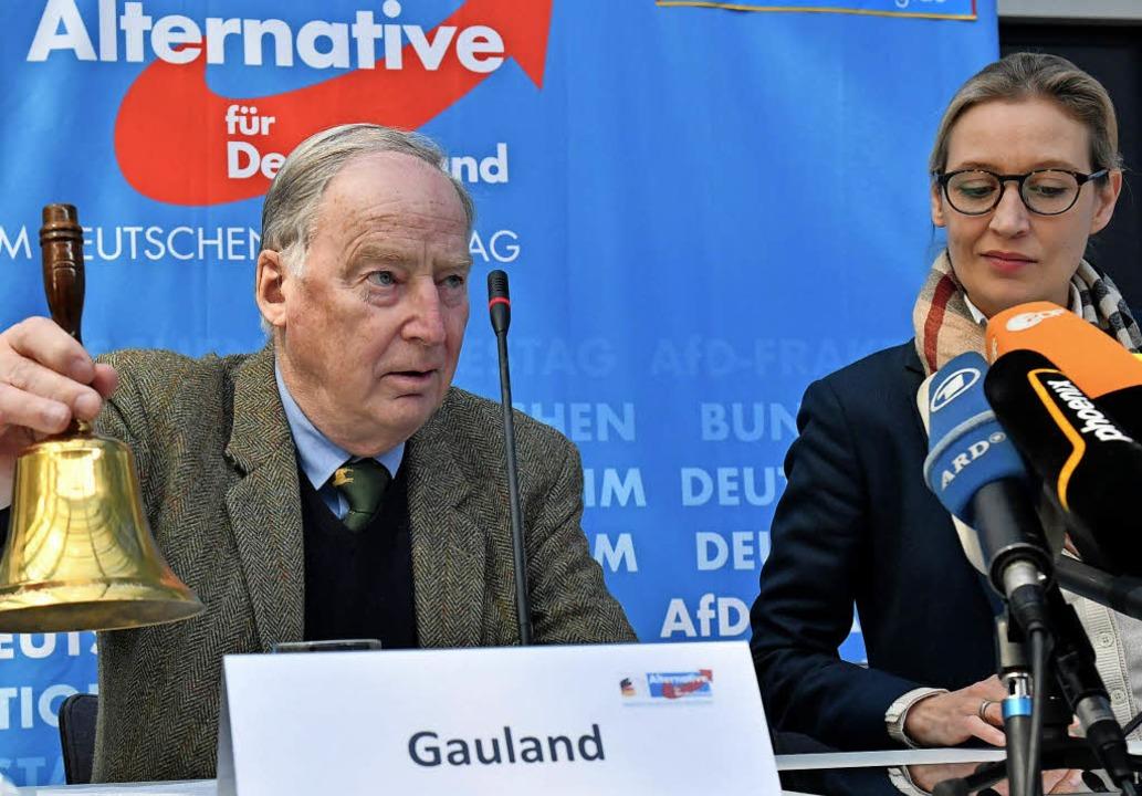 AfD-Fraktionschef  Alexander Gauland u...e Co-Fraktionsvorsitzende Alice Weidel  | Foto: DPA