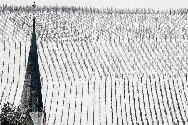 Fotos: Der Winter ist zurück – Südbaden versinkt im Schnee