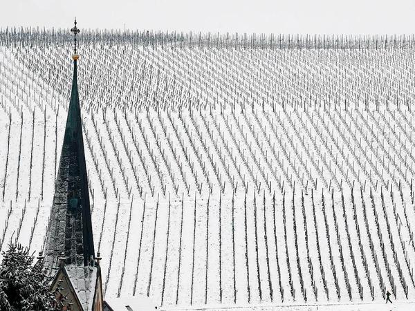 In Ebringen versinken die Weinberge im Schnee