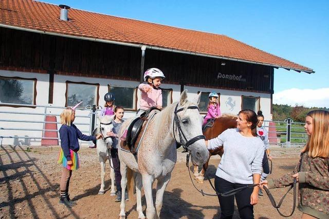 Ärger bei den Karsauer Ponyfreunden