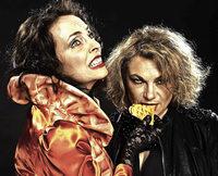 """Marianne Blum und Marina Gajda präsentieren am Samstag im Wehrer Storchehus ihr Programm """"Die Waffeln der Frau"""""""