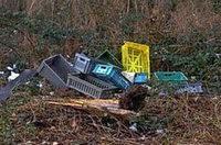 Plastikpaletten im Wald entsorgt