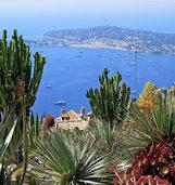 Exotik an der Riviera