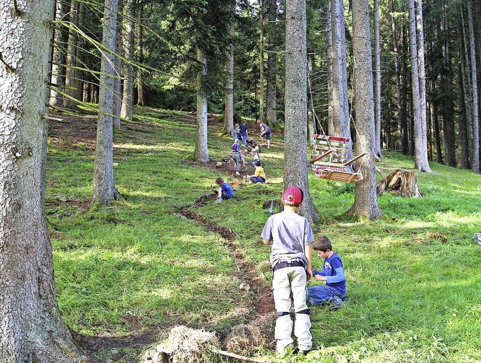 Entdecken und Erleben im Wald   | Foto: Wurzelgnome