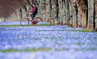 Der Frühling ist da – das sind die Gewinner und Verlierer