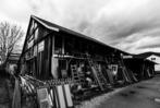 Fotos: Letzter Blick auf die Flohmarktscheune vom Tröndle-Areal