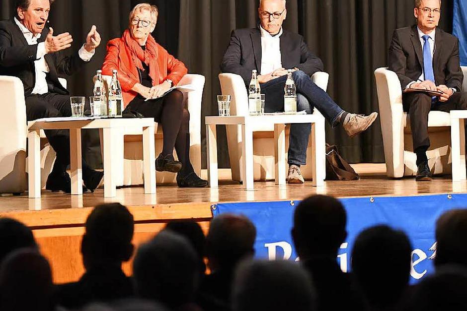 Manfred Lucha, Ursula Querfurth, Bernd Fey und Hanno Hurth (von links) (Foto: Jonas Hirt)
