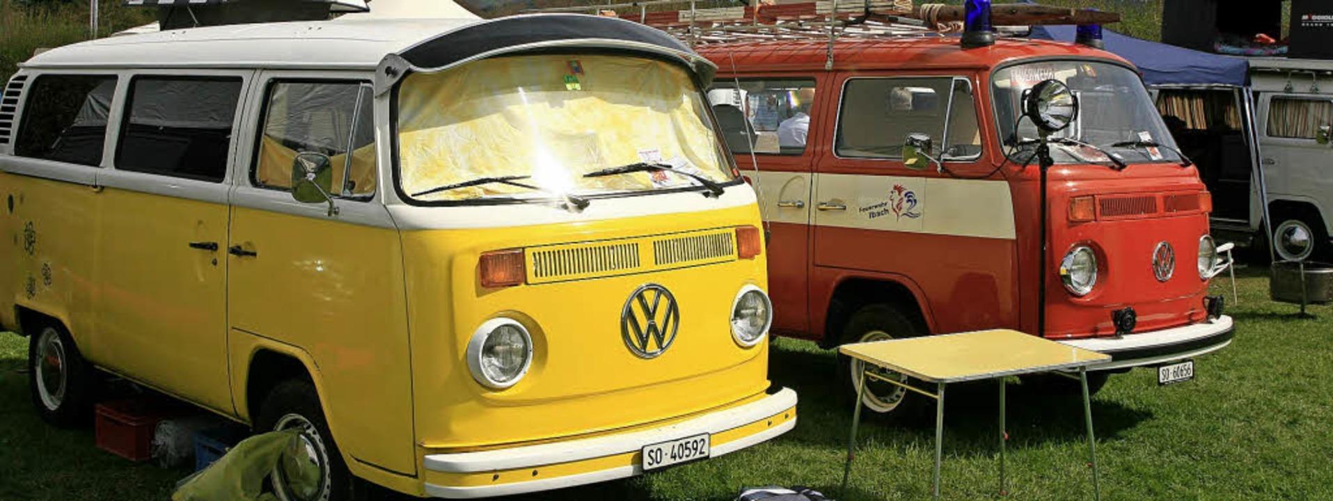VW-Busse aller Couleur und jeden Alter...rzwälder VW-Bus-Treffen in Kirchzarten  | Foto: Wolf-Wilhelm Adam