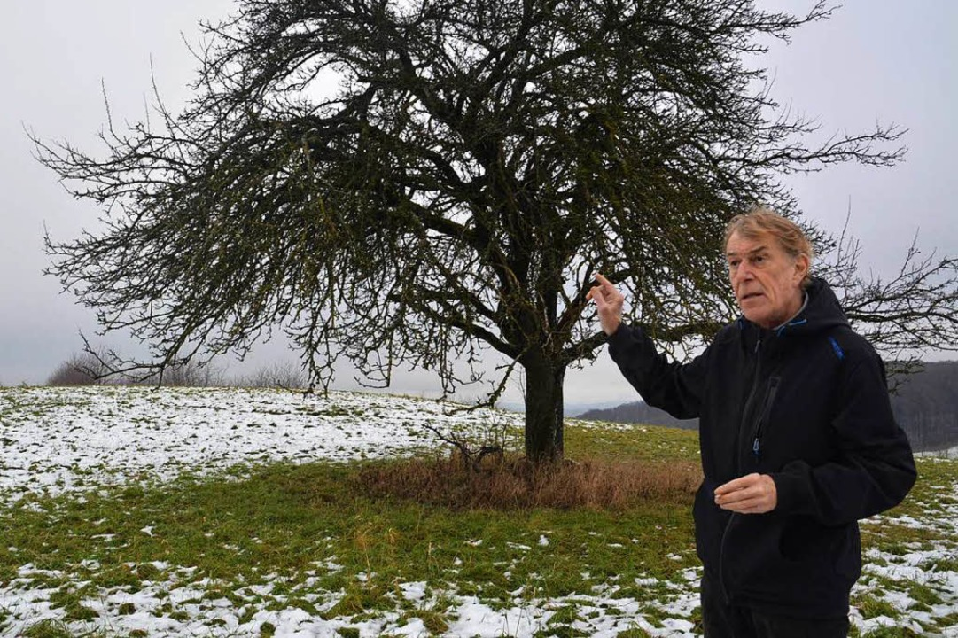 Die Erhebung auf dem Rührberg wäre für... sagt Projektinitiator Ulrich Kaiser.   | Foto:  Jacob