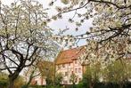 Fotos: Es grünt und blüht in Heitersheim