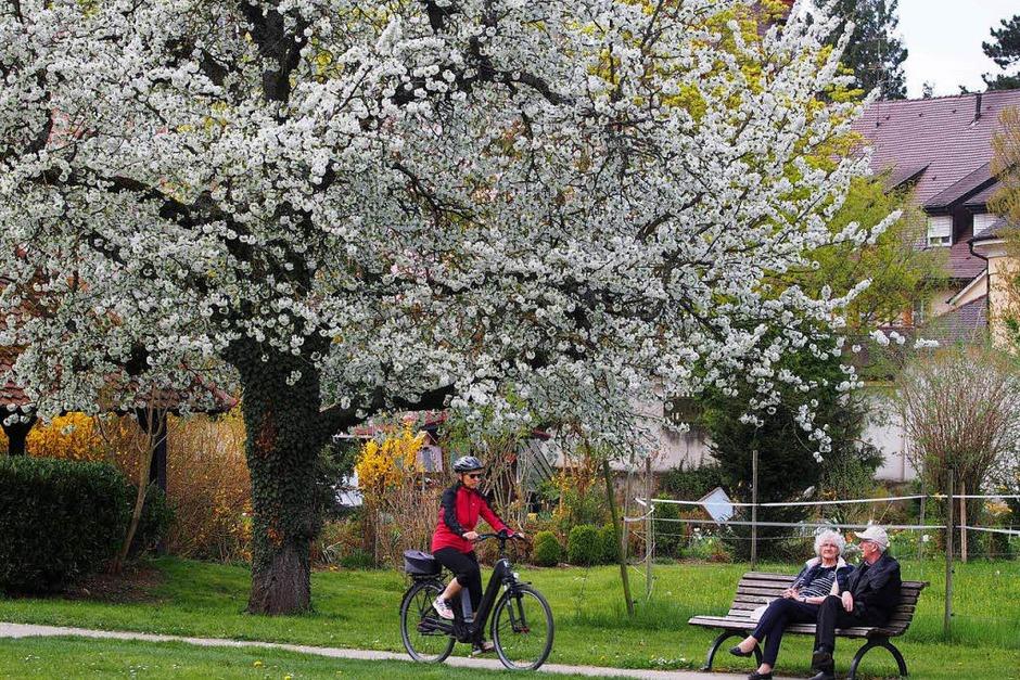 Auch Radfahrer passieren den Park gerne. (Foto: Markus Donner)