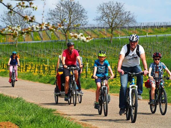 Er durch die Reben, dann mitten durch den Schlosspark - Heitersheim ist auch ein Eldorado für Radfahrer.