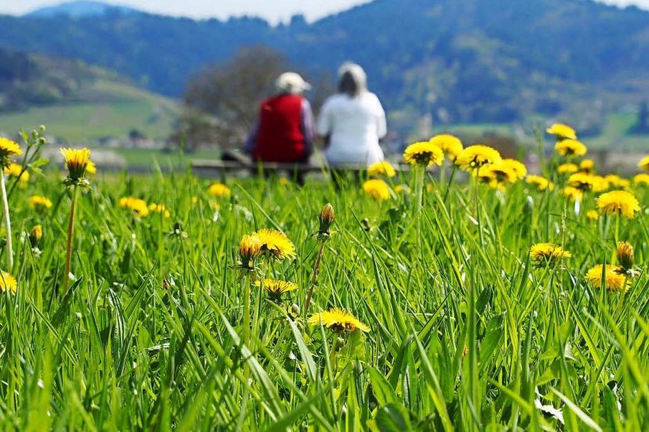 Ausblick auf die nahen Schwarzwaldberge. (Foto: Markus Donner)