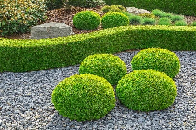 Wie der eigene Garten pflegeleicht geplant werden kann