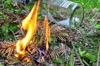 Brand im Unterholz rasch gelöscht